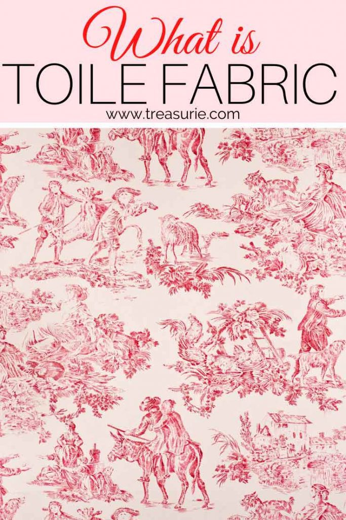 What is Toile
