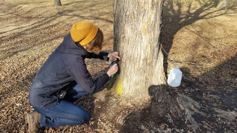 TreeTime.ca team member
