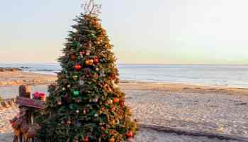 Top Christmas Events In San Diego For Families In 2020