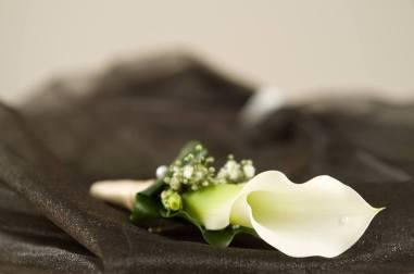 2 June Wedding Photo 6