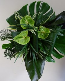 Buy your own Tropical Leaves here