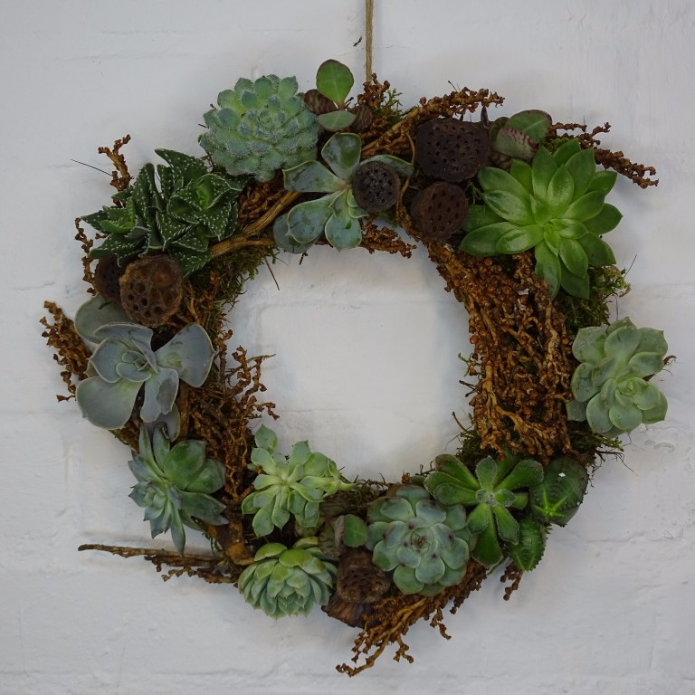 DIY Echeveria Wreath