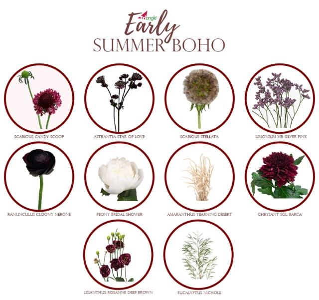 Boho Early Summer export as.jpg