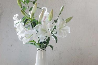 Flower Care Guides & DIY tutorials