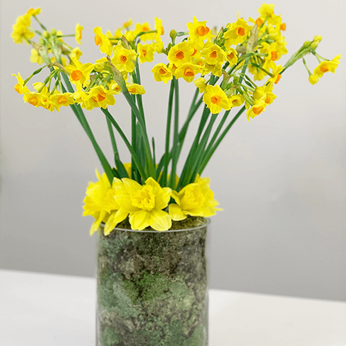 DIY Spring Arrangement