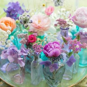 Achillea Design Combination - Wholesale Flowers Direct