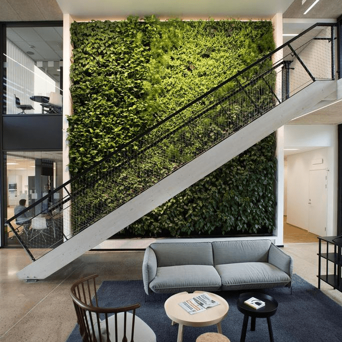 Living Walls in Corporate Office or Home Decor (Skanska)