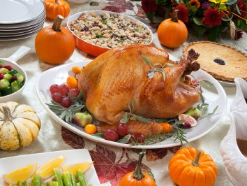Thanksgiving 2015 - courtesy of Presidential Aviation