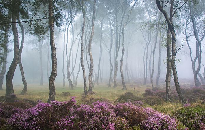 #4 – Stanton Moor, UK.