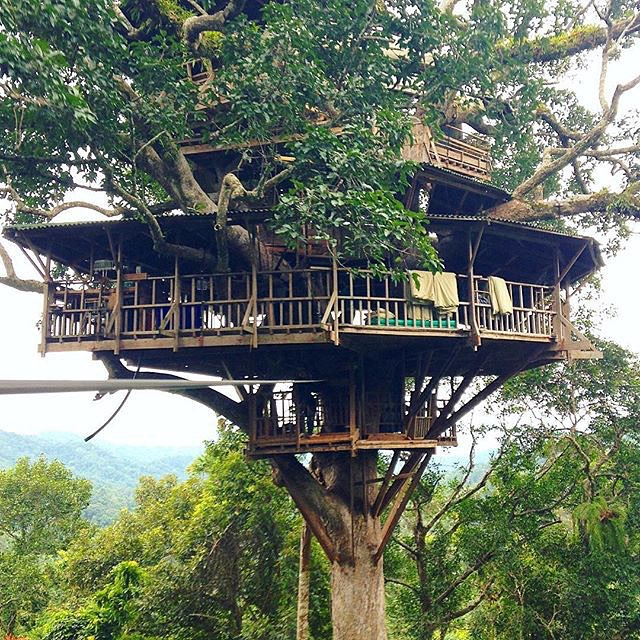 15 Incredible Things To Do And See In Laos For Muslim Travelers! The Gibbon Experience