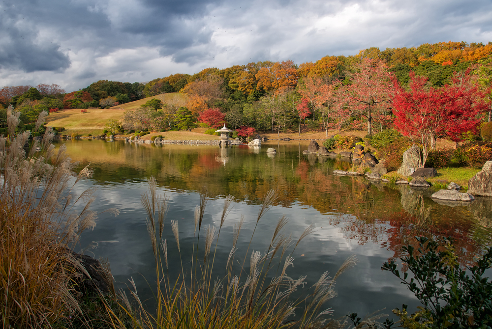 When Is the Best Time to Go to Osaka, Autumn Foliage