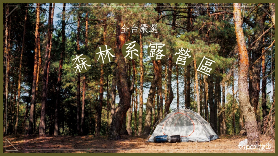 森林系露營區