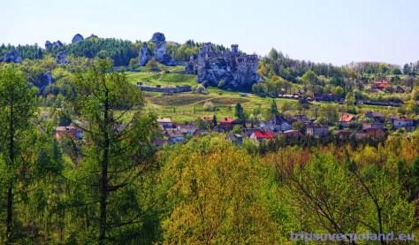 Podzamcze - Góra Birów'2012 - w oddali Zamek Ogrodzieniec