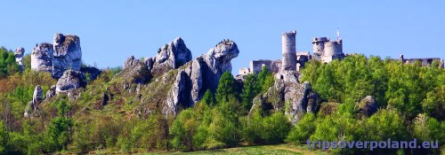 Podzamcze - Zamek Ogrodzieniec