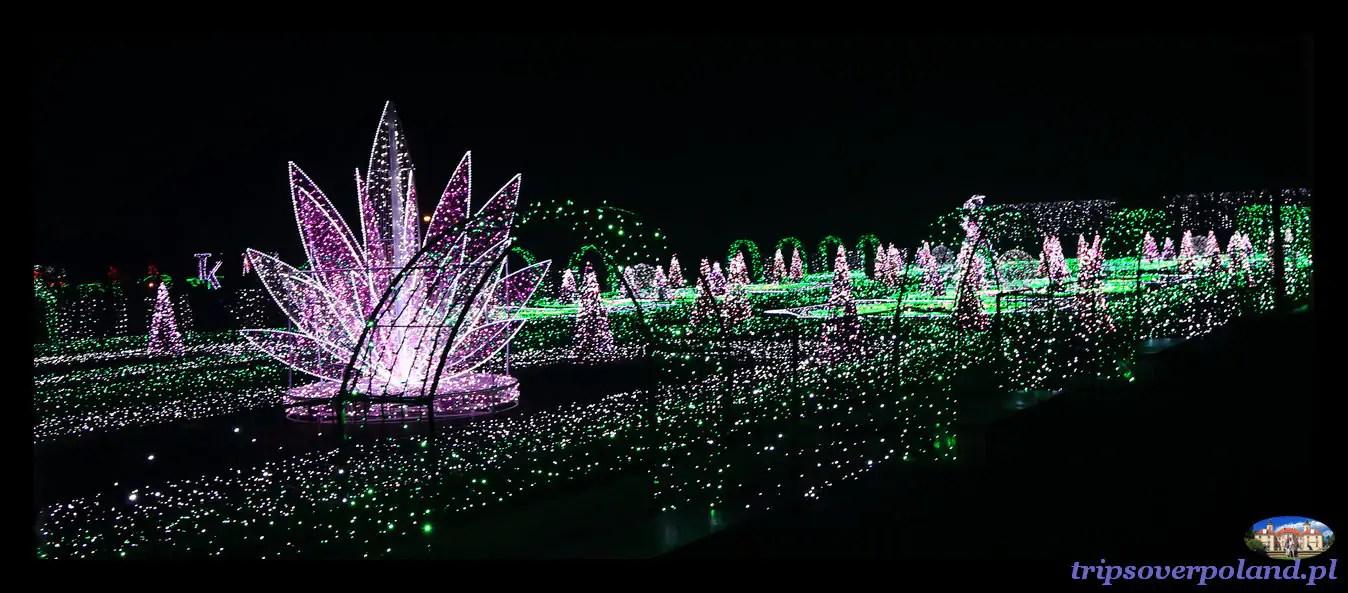 Królewski Ogród światła W Wilanowie I Inne świetlne Atrakcje