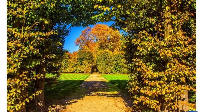 Mała Wieś – w kolorach złotej polskiej jesieni