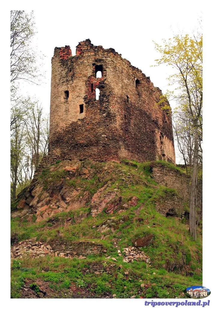 Zamek Świecie (D.Ś.)