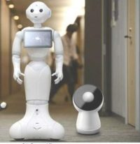 Pepper and Jibo