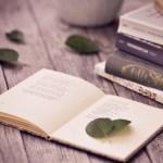 principios del libro