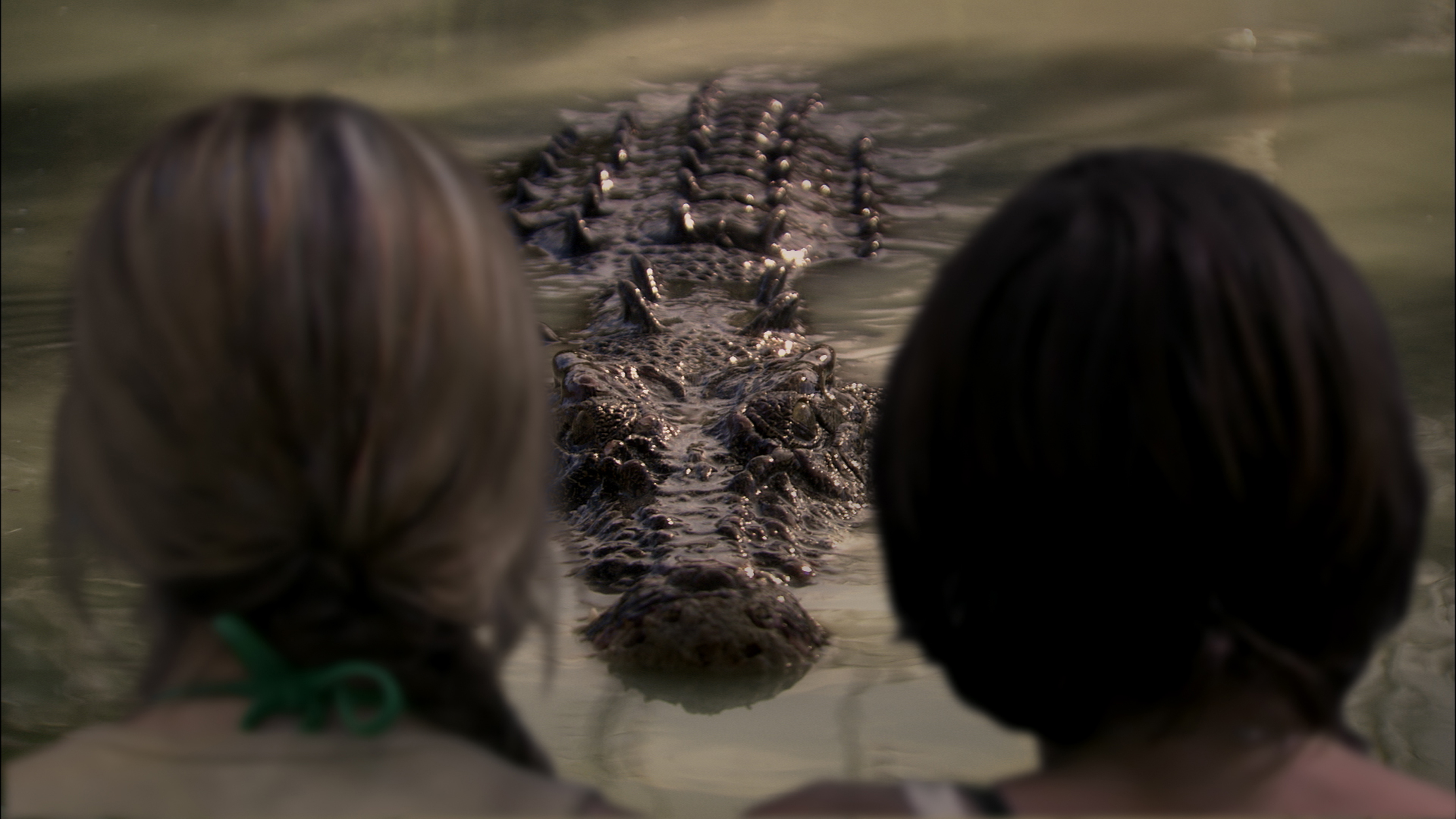 When Animals Attack ... on Tubi TV: Black Water