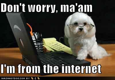 meme-internet-babypuppy