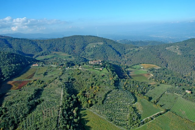 02 Holiday accommodation in Gaiole in Chianti S245