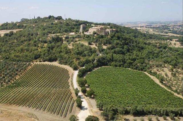 04 Wineries with a View, Bagno Vignoni
