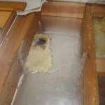 Hole in foam insulation