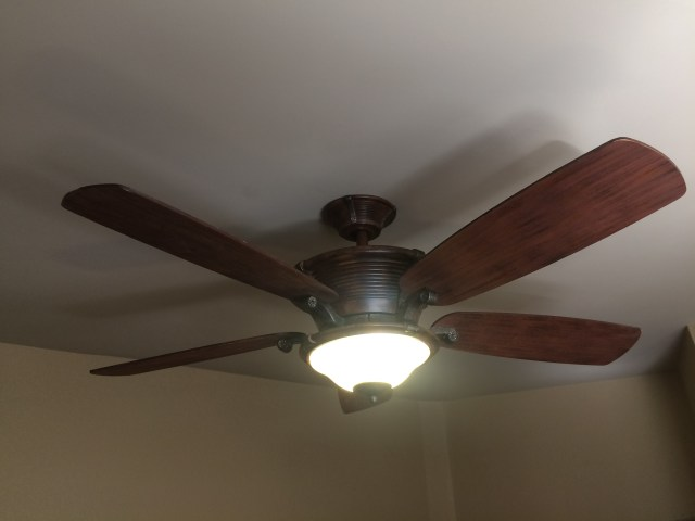 Master Bedroom Ceiling Fan with Light