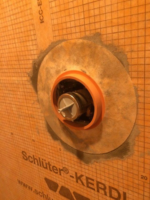 Shower valve seal
