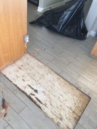Floor after hardwood shim removal