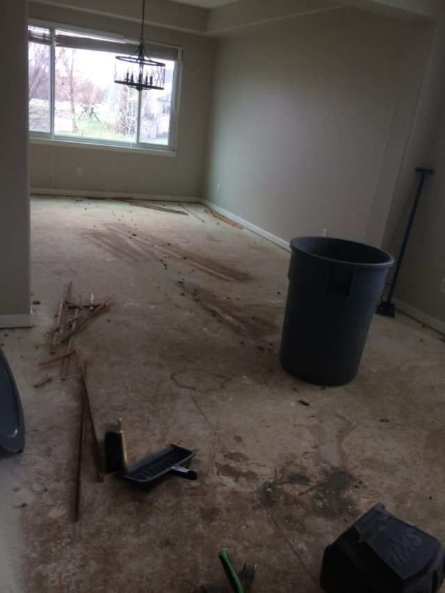 Clean up after carpet removal