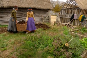 """Women tending a garden in the English Village of Plimoth Plantation. In the foreground are some plants they use to make """"infusions."""""""