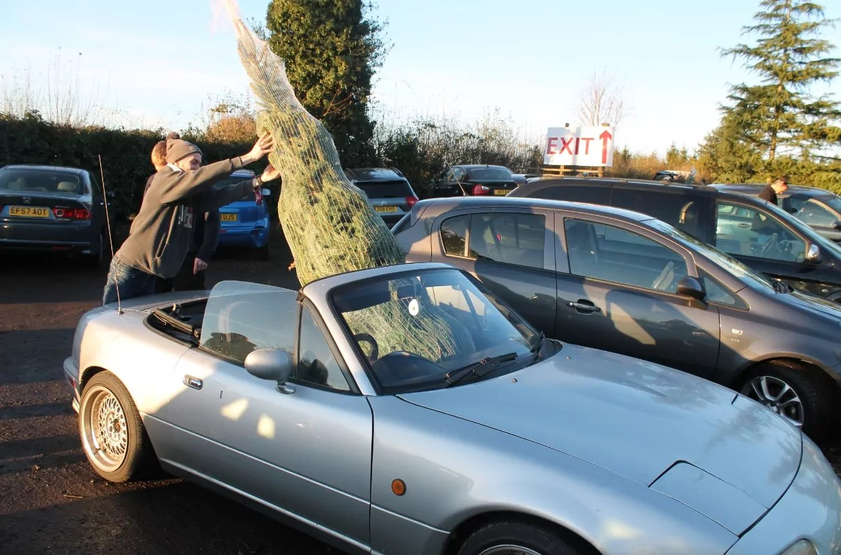 Best Car To Transport A Christmas Tree