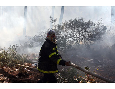 מי מטייח את הסיבות לשריפה בכרמל?