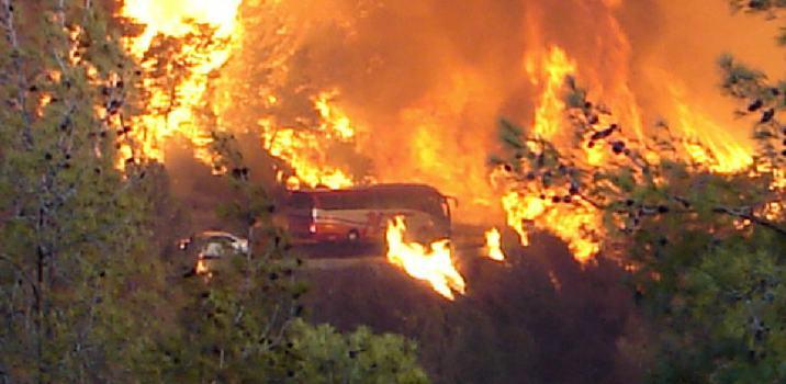 הגורם האמיתי לשריפה בהר הכרמל!