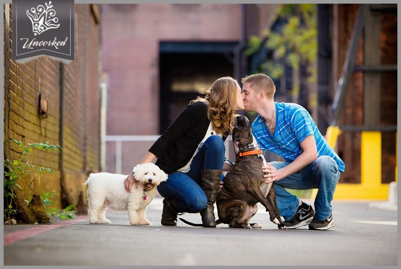Puppy love and dog walking at their engagement session - © 2013 Uncorked Studios, LLC - Destination & Philadelphia Pennsylvania Wedding Photographer