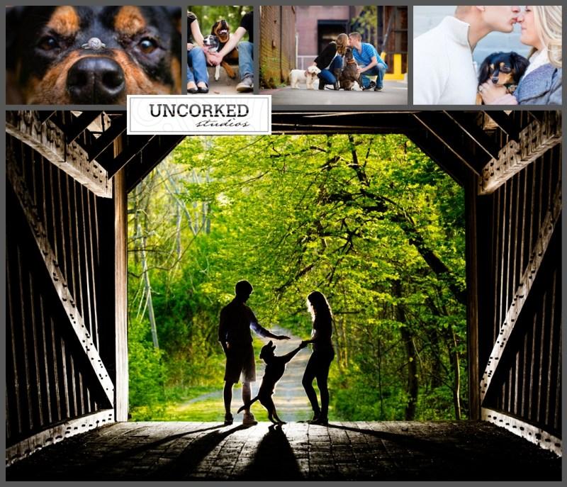UncorkedStudios_DogEngagementPhotos