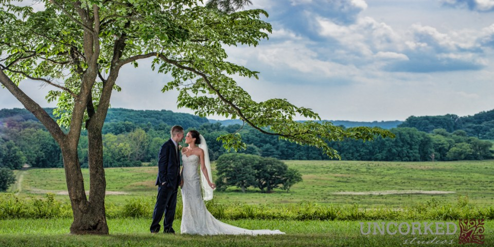 Valley Forge Park Wedding