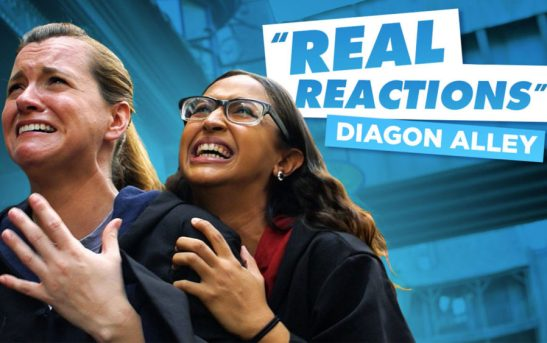 Check out the emotional reactions our fans have to The Wizarding World of Harry Potter - Diagon Alley.