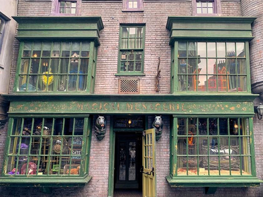 Colección de animales mágicos en El mundo mágico de Harry Potter