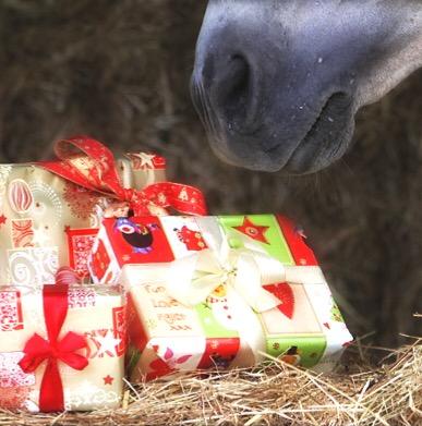 Cavallo e regali