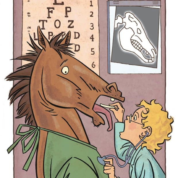 Cavallo dal dottore