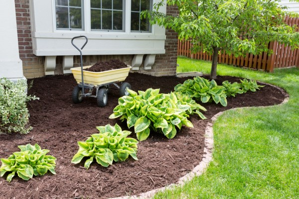 quick curb appeal projects