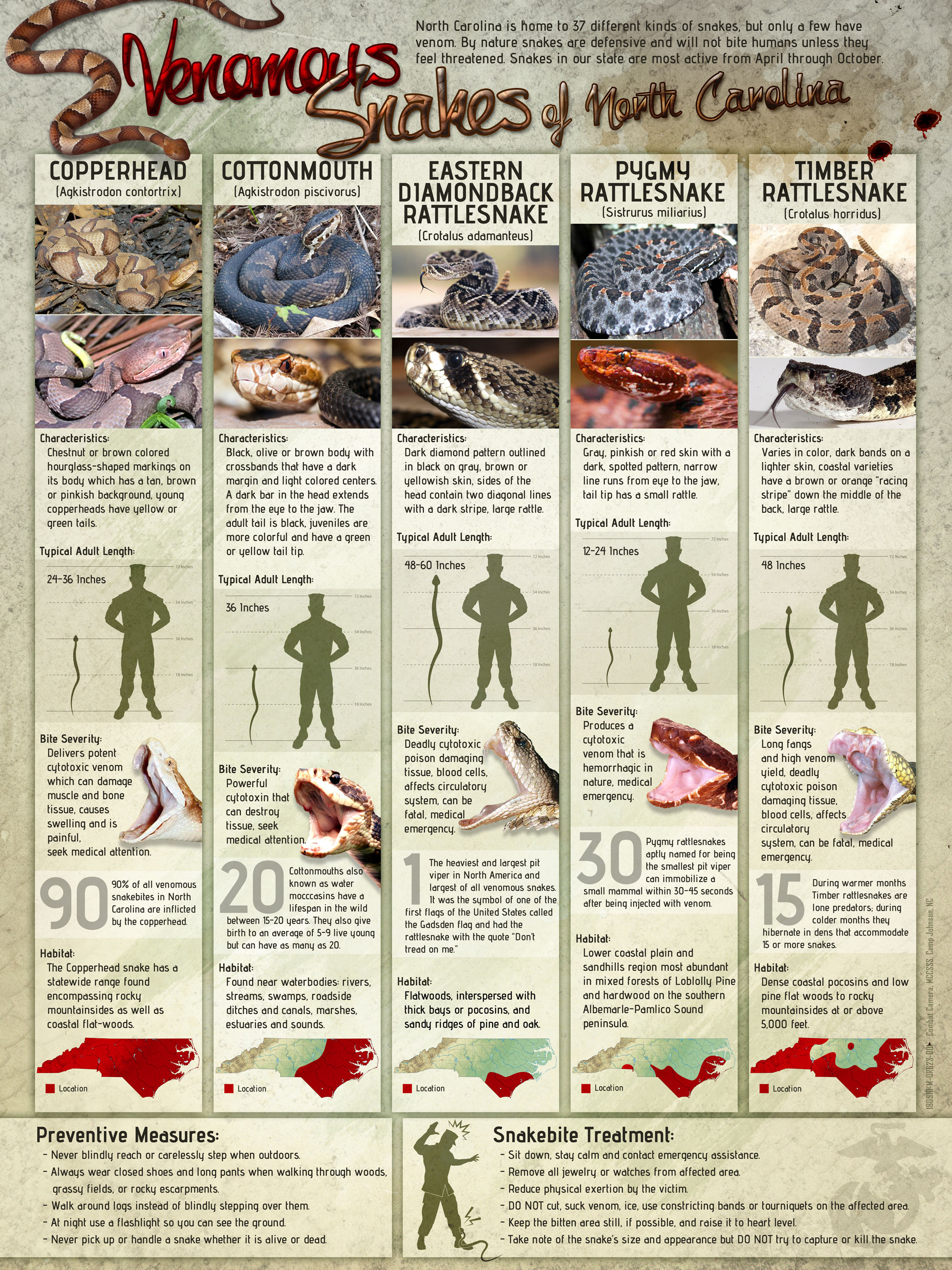 North Carolina Venomous Snakes Poster created to educate United States Marines and Sailors located in the North Carolina region about the five types of venomous snakes. The infographic poster shows and describes the specific characteristics of the copperhead, cottonmouth, eastern diamondback rattlesnake, pygmy rattlesnake, and timber rattlesnake along with the typical length, bite severity, preventive measure and snake bite treatment.