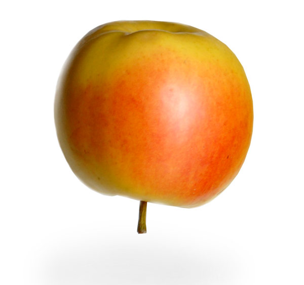 An apple, right-side-up