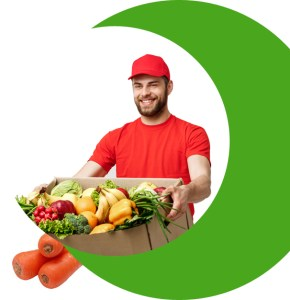 grocery delivery startup