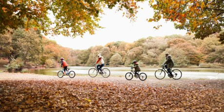 cycling-in-autumn