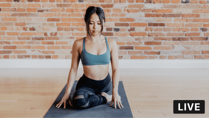 YouTube Hatha Yoga with Mary, Thursday, 4/30/20, at 3:00 p.m. Eastern/ noon Pacific. Class runs 45 minutes with 5-minute buffer for warm-up/cool down.