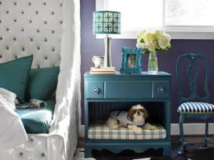 Incorporating Your Pet In Your Home Design